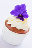 Violet cupcake Stock Photos
