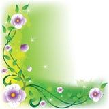 Violet_day Imagem de Stock Royalty Free