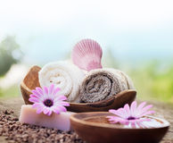 Violet dayspa nature set Stock Photography