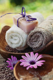 Violet dayspa nature set Royalty Free Stock Image