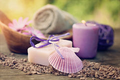 Violet dayspa nature set Royalty Free Stock Photography