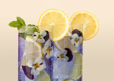 Violet drink with edible flowers Royalty Free Stock Images