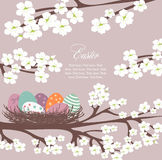 Violet Easter card Stock Photos