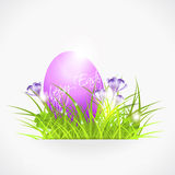 Violet easter egg in grass Royalty Free Stock Image