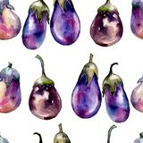 Violet eggplant vegetable in a watercolor style pattern. royalty free stock images