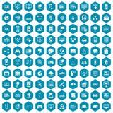 violet för sapphirine för 100 nätverkssymboler Royaltyfria Foton