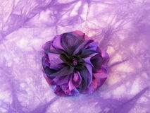 Violet fabric flower-brooch Royalty Free Stock Photo
