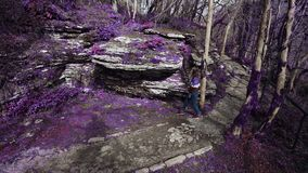 Violet fairytale forest. Girl walking in the magical purple forest sees a beautiful mountain cut and takes the picture. Violet fairytale forest. A girl walking stock video footage