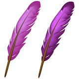Violet feather Royalty Free Stock Photography