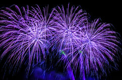 Violet fireworks 2017. Celebrating holidays with colorful fireworks display. Happy New Year 2017 greeting card. Happy Independence Day. Success celebration Royalty Free Stock Images