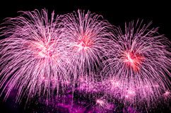 Violet fireworks display. Celebrating holidays with colorful fireworks display. Happy New Year 2017 greeting card. Happy Independence Day. Success celebration Stock Photo