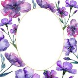 Violet flax. Floral botanical flower. Frame border ornament square. Aquarelle wildflower for background, texture, wrapper pattern, frame or border Stock Image