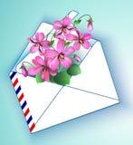 Violet Floral-achtergrond in de lente en de zomer in één envelop Vector illustratie Royalty-vrije Stock Afbeelding