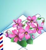 Violet Floral-achtergrond in de lente en de zomer in één envelop Vector illustratie Royalty-vrije Stock Afbeeldingen
