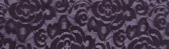Violet floral lace band background. Violet floral lace band texture useful as a background royalty free stock photography