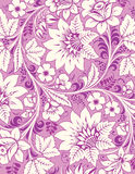 Violet floral ornament Royalty Free Stock Photos