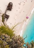 Violet flower above a cliff with rusty shipwreck Royalty Free Stock Images