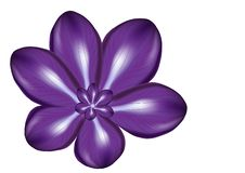 Violet flower abstract isolated illustration stock photos