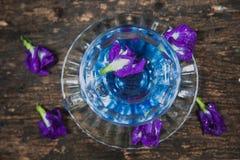 Violet flower Asian pigeonwings or Butterfly Pea Heabal hot drinking tea Stock Photo