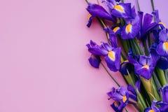 Violet Flower Bouquet fotografie stock