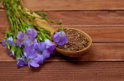 Violet flower of flax and seeds in a wooden spoon on an old vint Stock Photos