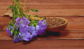 Violet flower of flax and seeds in a wooden spoon on an old vint Royalty Free Stock Images