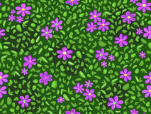 Violet flower and green leaf pattern Royalty Free Stock Photos