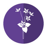 Violet flower nature spring icon shadow Stock Image