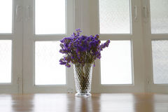Violet flower in vase Royalty Free Stock Photo