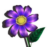 Violet flower Royalty Free Stock Photo