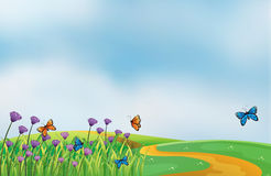 Violet flowers along the road. Illustration of violet flowers along the road Royalty Free Stock Photos