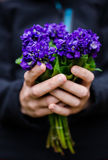 Violet flowers bouquet Stock Photos
