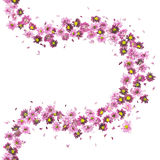 Violet Flowers Curve Royalty Free Stock Photos