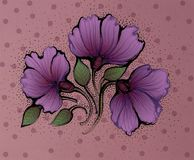 Violet flowers. Illustration. Stock Photo