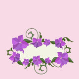 Violet flowers and ornate frame background. Stock Photos