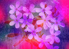 Violet flowers. Stylized floral picture with texture Stock Photo