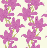 Violet flowers. On the tender yellow background stock illustration