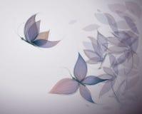 Violet Flowers tiene gusto de mariposas Fotografía de archivo libre de regalías
