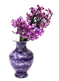 Violet flowers in vase Stock Photography