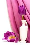 Violet flowers in vase Stock Images