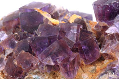 Violet fluorite cubes Stock Photography