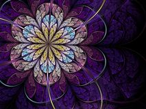Violet fractal flower Stock Photography