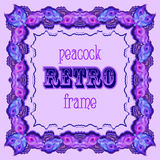 Violet frame with painted peacock feathers and retro label Stock Image