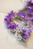 Violet garland Stock Images