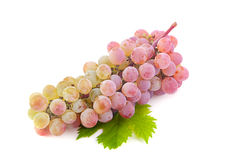 Violet grape fruit Royalty Free Stock Photo