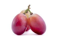 Violet grape fruit Stock Photos