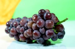 Violet grape Stock Images