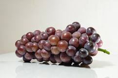 Violet grape Royalty Free Stock Images