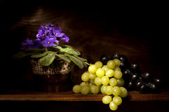 Violet and Grapes Royalty Free Stock Photos