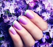 Violet with green colors art manicure Royalty Free Stock Image